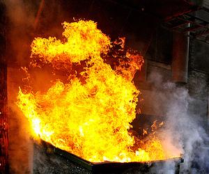 World Series Reveler Not Guilty of Arson